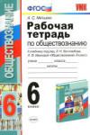Рабочая тетрадь по обществознанию. 6 класс / Митькин