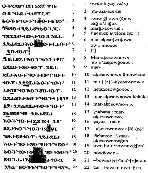 Рис. 2. Страница албанского текста VII 33 /1/.